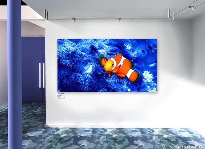 Wandbild Jack Dyrell CLOWN FISH Wohnbeispiel