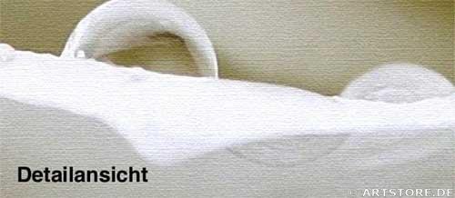 Wandbild Jack Dyrell WET WHITE ROSE Detailausschnitt