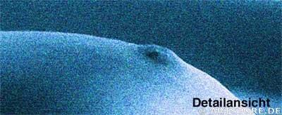 Wandbild Jack Dyrell WOMAN IN BLUE - AKT Detailausschnitt