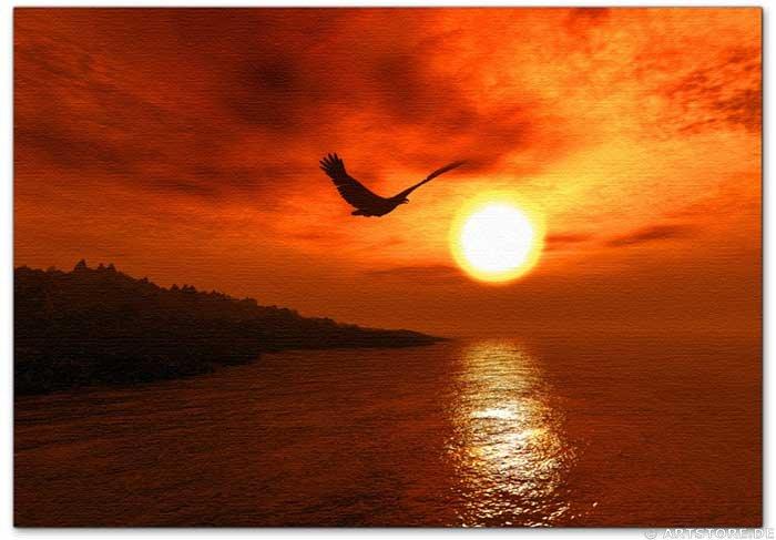 Wandbild Jack Dyrell SUNSET FLY
