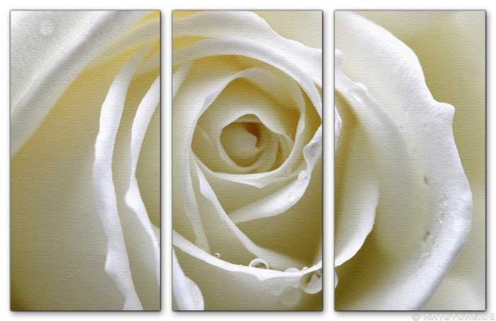 Wandbild Jack Dyrell WHITE ROSE EDITION