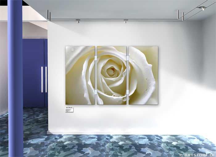 Wandbild Jack Dyrell WHITE ROSE EDITION Wohnbeispiel