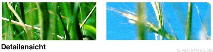 Wandbild Jack Dyrell SPRING FEELINGS Detailausschnitt