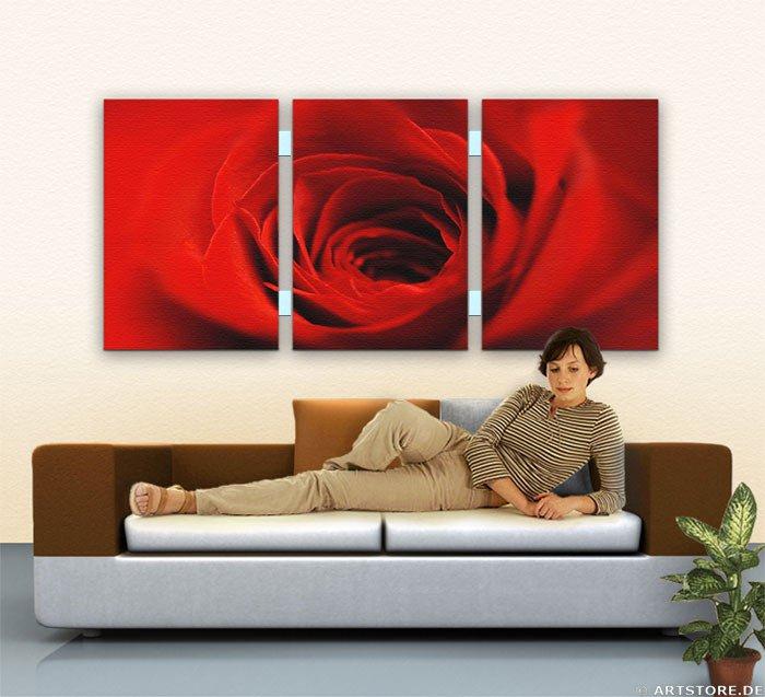 Wandbild Jack Dyrell RED BEAUTY ROSE Wohnbeispiel