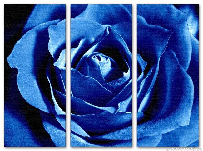 Wandbild Jack Dyrell BLUE ROSE - EDITION