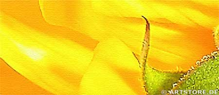 Wandbild Jack Dyrell SUNFLOWER ENERGY Detailausschnitt