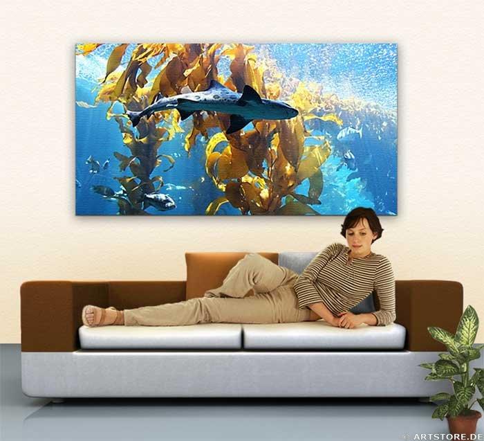 Wandbild Jack Dyrell TIGER SHARK Wohnbeispiel