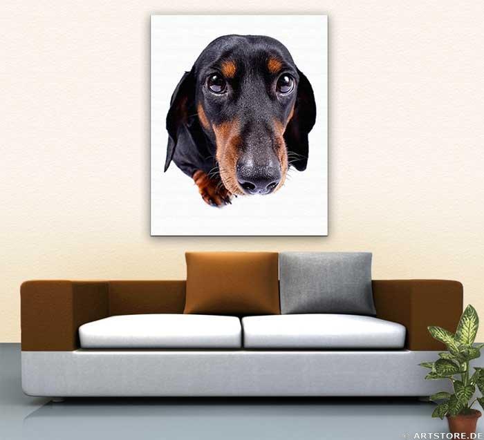 Wandbild Jack Dyrell FAITHFUL DOG Wohnbeispiel