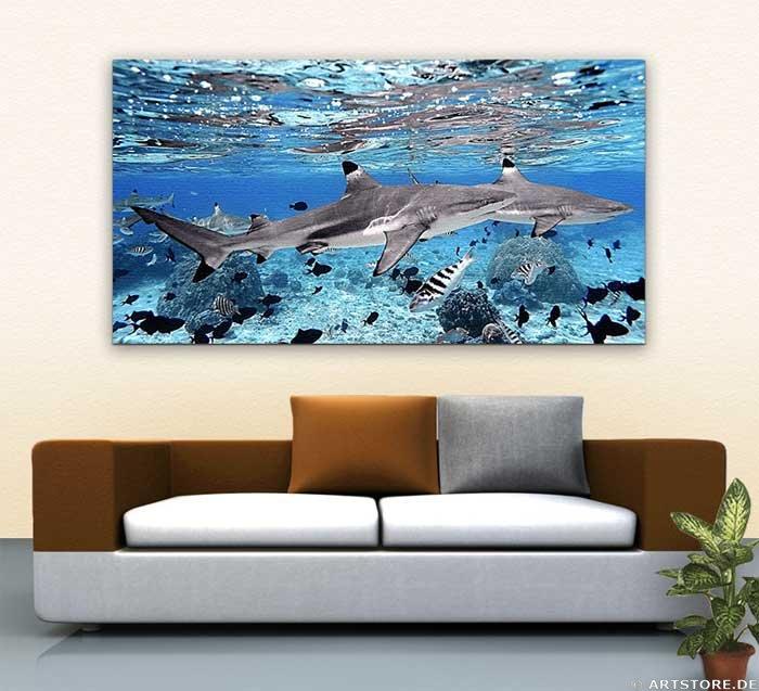 Wandbild Jack Dyrell GREAT SHARK Wohnbeispiel