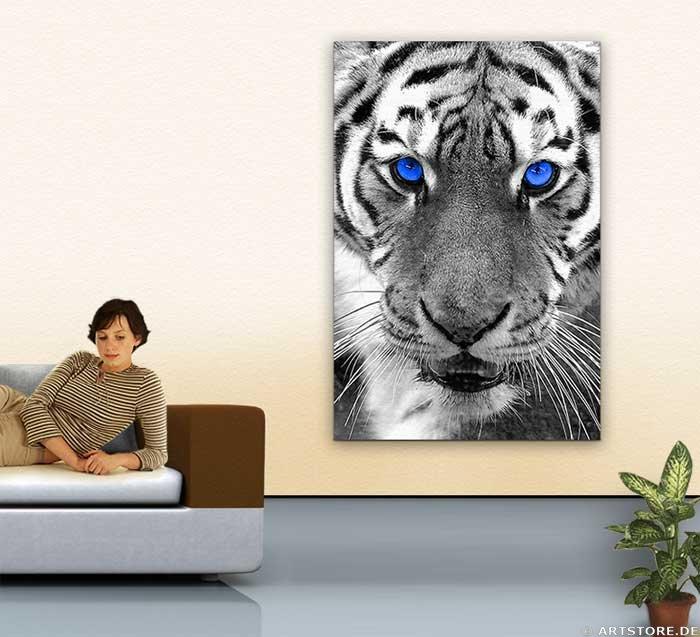 Wandbild Jack Dyrell WHITE TIGER - BLUE EYES Wohnbeispiel