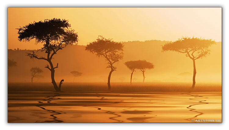 Wandbild Jack Dyrell AFRIKA MORGEN