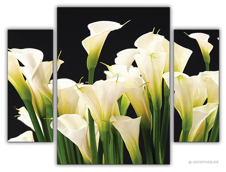 wandbilder jack dyrell callas kunstdrucke leinwand keilrahmen. Black Bedroom Furniture Sets. Home Design Ideas