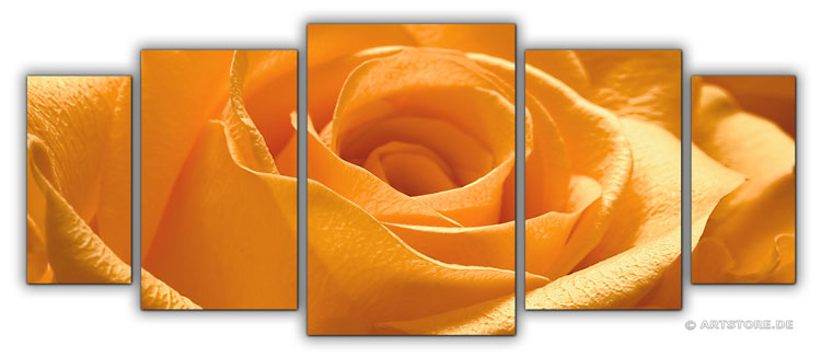 Wandbild Jack Dyrell ORANGE ROSE EDITION