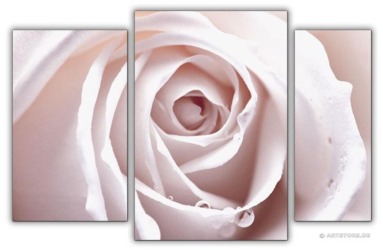 Wandbild Jack Dyrell ROSA ROSE EDITION