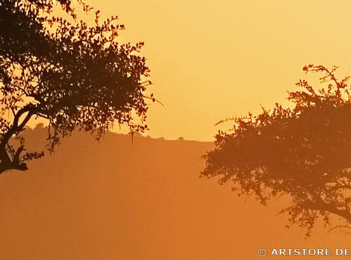 Wandbild Jack Dyrell AFRIKA REFLEKTION Detailausschnitt