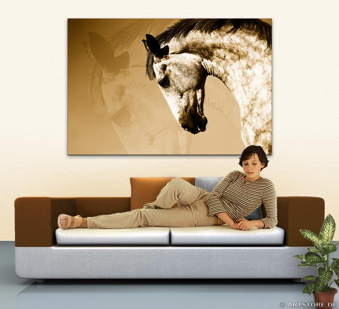 Wandbild Jack Dyrell BEAUTY HORSE Wohnbeispiel