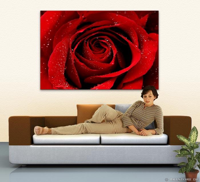 Wandbild Jack Dyrell WET RED ROSE Wohnbeispiel