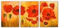 Wandbilder Mia Morro POPPY FLOWERS
