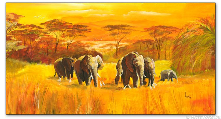 Wandbild Mia Morro AFRICAN WILDLIFE
