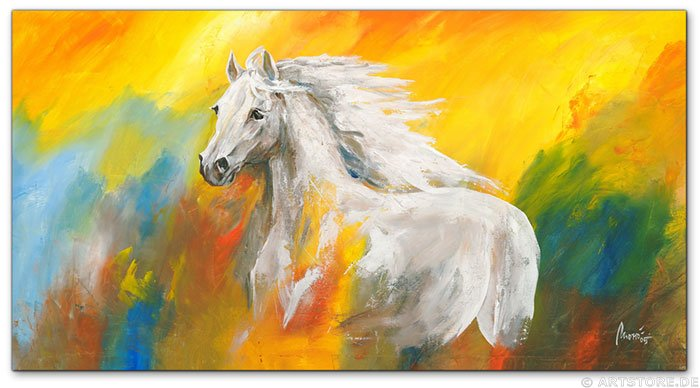 Wandbild Mia Morro WILD HORSE