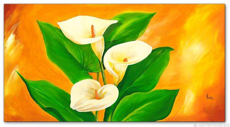 Wandbild Mia Morro WHITE CALLA