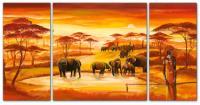 Wandbilder Mia Morro AFRICAN WILDLIFE - EDITION