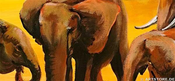 Wandbild Mia Morro AFRICAN WILDLIFE - EDITION Detailausschnitt