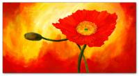 Wandbilder Mia Morro BEAUTIFUL FLOWER