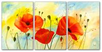 Wandbilder Mia Morro POPPY COLORS - EDITION