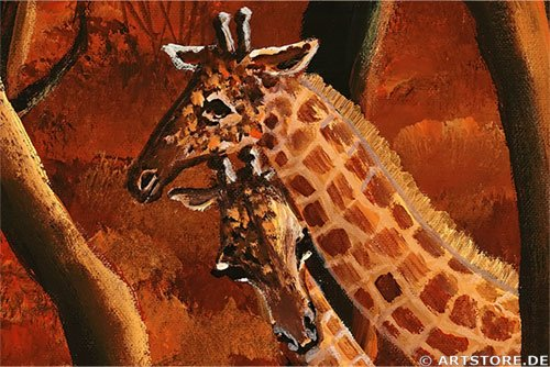 Wandbild Mia Morro AFRICAN WILDLIFE MY LOVE Detailausschnitt