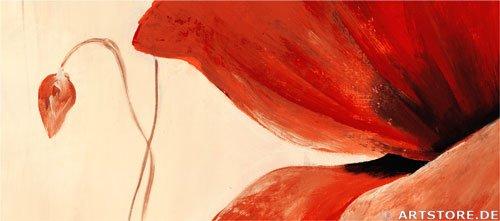 Wandbild Mia Morro WILDE MOHNBLUMEN Detailausschnitt