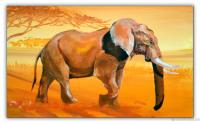 Wandbilder Mia Morro ELEFANT - AFRIKA BILDER EDITION