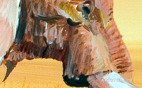 Wandbild Mia Morro ELEFANT - AFRIKA BILDER EDITION Detailausschnitt