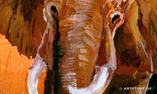 Wandbild Mia Morro ELEFANTEN - AFRIKA BILDER EDITION Detailausschnitt