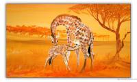 Wandbilder Mia Morro GIRAFFEN - AFRIKA BILDER EDITION