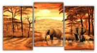 Wandbilder Mia Morro ELEFANTEN AM WASSER