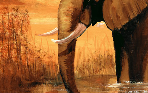 Wandbild Mia Morro ELEFANTEN AM WASSER Detailausschnitt