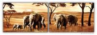 Wandbilder Mia Morro ELEFANTEN - AFRIKA EDITION
