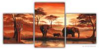 Wandbilder Mia Morro AFRIKA ELEFANTEN